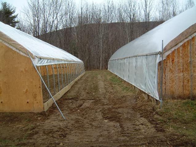 a closeup of the roll up sides in operation on our 26 wide greenhouses